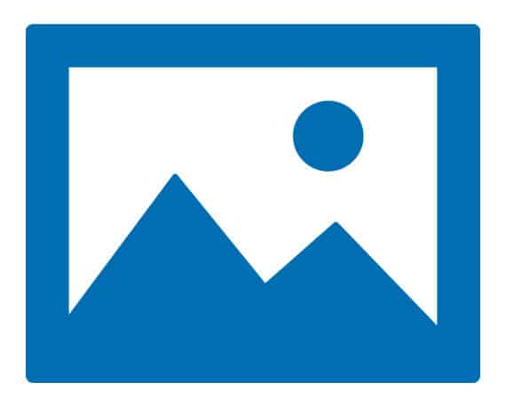Website Images Icon